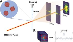 FEL-based fluctuation X-ray scattering (FXS)
